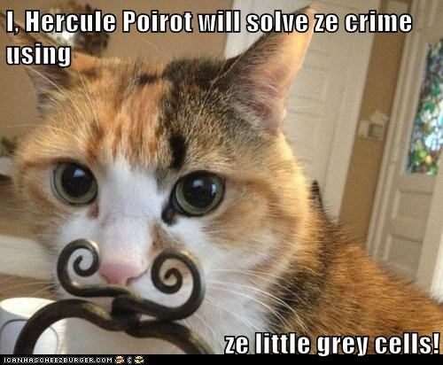 I, Hercule Poirot will solve ze crime using  ze little grey cells!