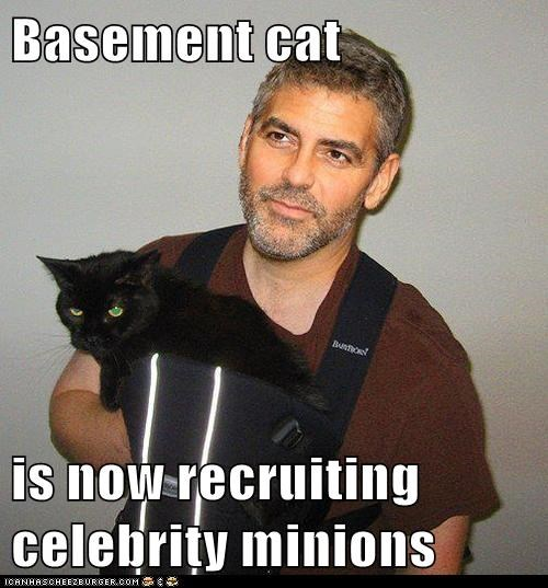 basement cat celeb evil george clooney minion recruit - 6366591488