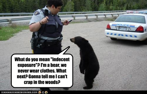 "What do you mean ""indecent exposure""? I'm a bear, we never wear clothes. What next? Gonna tell me I can't crap in the woods?"