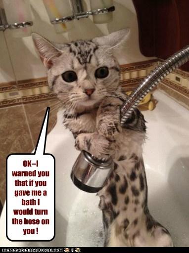OK--I warned you that if you gave me a bath I would turn the hose on you !