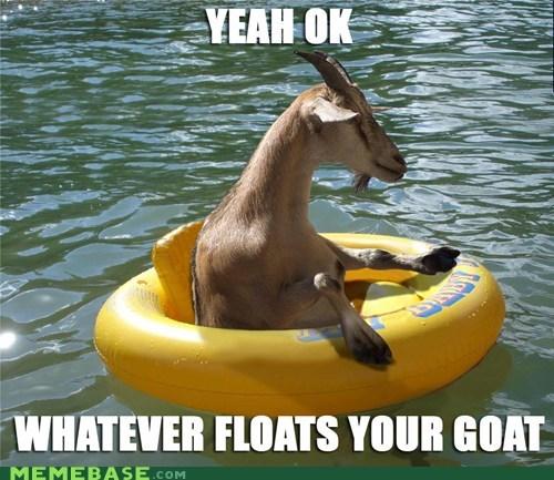 boat float goat Memes puns - 6367592704