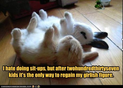 bunnies,exercise,figure,kids,rabbits,sit ups