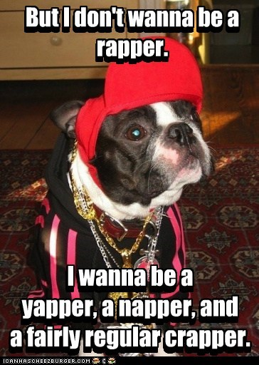 But I don't wanna be a rapper. I wanna be a yapper, a napper, and a fairly regular crapper. But I don't wanna be a rapper. I wanna be a yapper, a napper, and a fairly regular crapper.