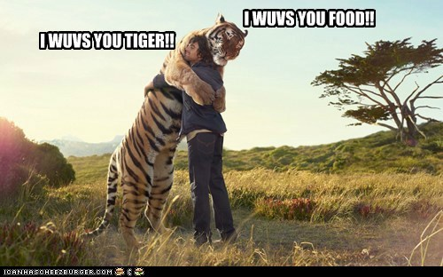 Meme of a tiger and human hugging in a field. The man says 'i love you tiger' and the tiger responds 'i love you food' to the man.