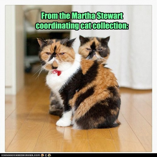 collection,color,complimentary,coordinate,Martha Stewart,match,twins