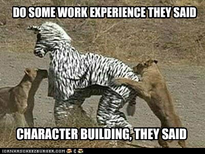 attack,captions,costume,experience,lions,They Said,work,zebra