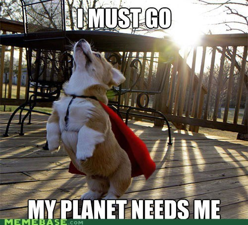 corgi i must go Memes santa superdog users what the heck - 6368774400