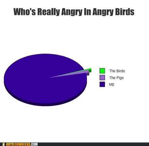 angry birds,AutocoWrecks,g rated,graphs,me,the birds,the Pigs