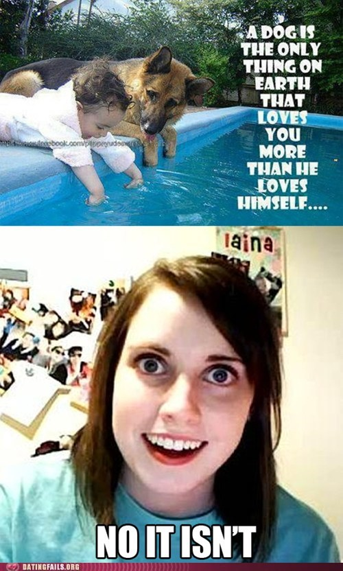 dogs overly attached girlfrien pets - 6369322752