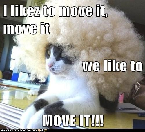 I likez to move it, move it we like to MOVE IT!!! - Lolcats
