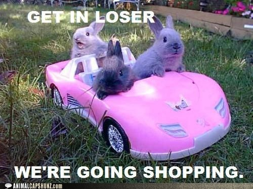 barbie car best of the week bunnehs bunnies car get-in-loser-were-going get-in-loser-were-going-shopping Hall of Fame mean girls - 6369919744