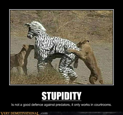 court good defense hilarious predators stupidity - 6370974720