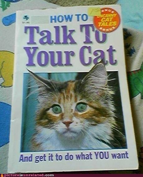 books feels pets talking to your cat wtf - 6371975168