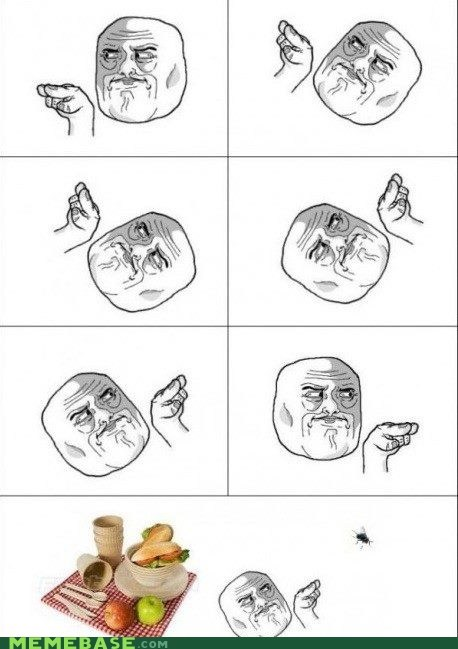 flies,im-watching-you,picnic,Rage Comics