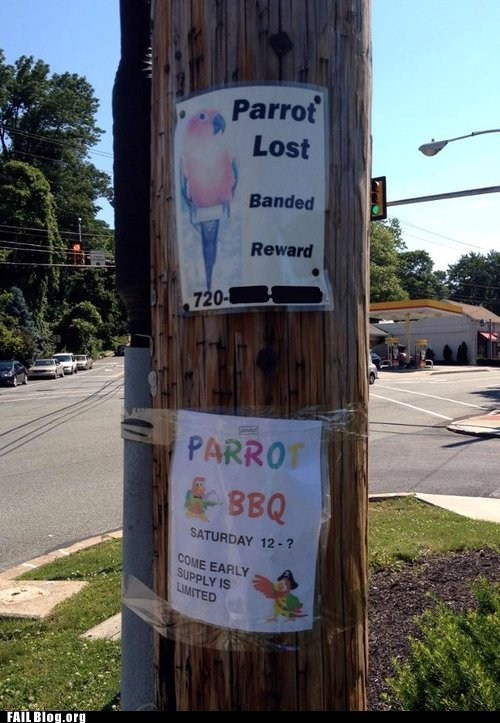 bbq,flyers,lost parrot,telephone pole