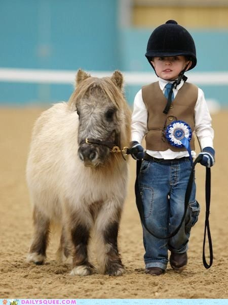 kids Miniature Horse pony show horse squee tiny - 6372360448