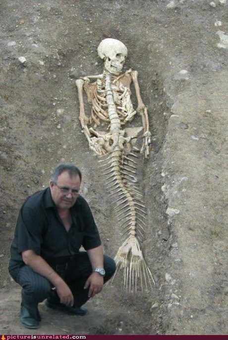 archeology mermaid skeleton wtf - 6372694272