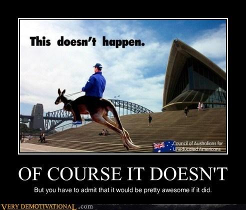 austrailia hilarious kangaroo tourism - 6372844288