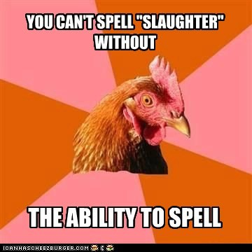 anti joke chicken chickens laughter Memes slaughter spelling - 6373195008