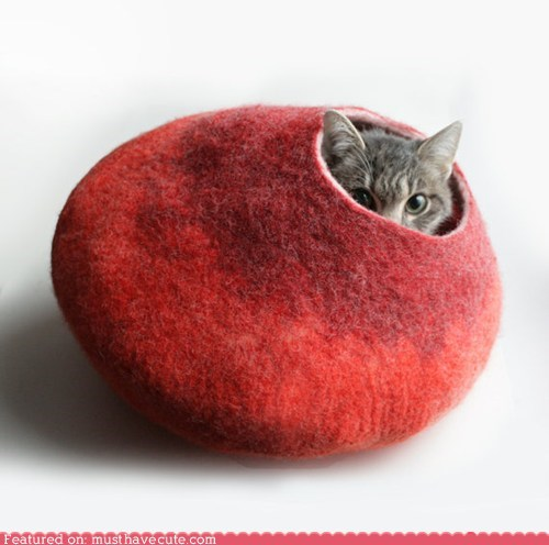 cat cat bed felt hole pet wool - 6373935616
