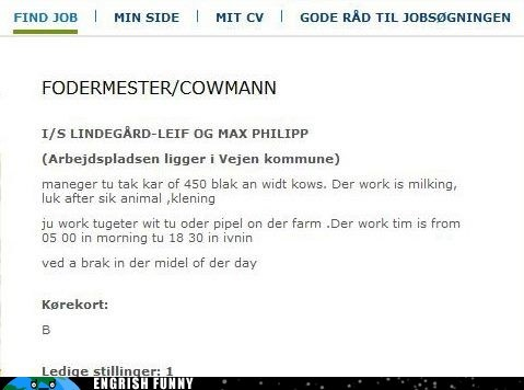 cows,employees,hiring,job ad,Sweden,swedish