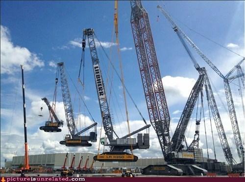 cranes uplifting wtf yo dawg - 6374270720