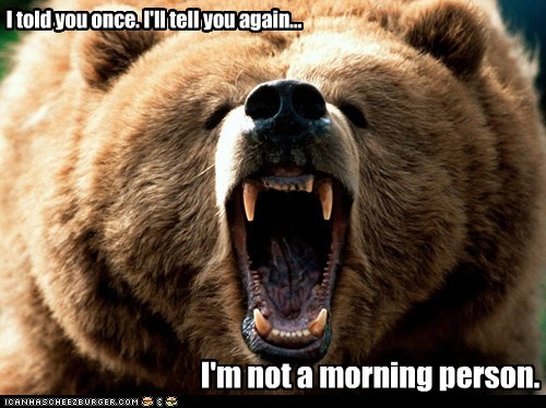 angry,bear,captions,morning person,roar,told you
