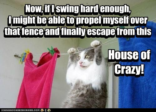 Now, if I swing hard enough, I might be able to propel myself over that fence and finally escape from this House of Crazy! House of Crazy! Now, if I swing hard enough, I might be able to propel myself over that fence and finally escape from this