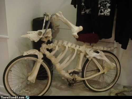 bone bicycle bonecycle g rated Hall of Fame skeleton there I fixed it - 6376030720