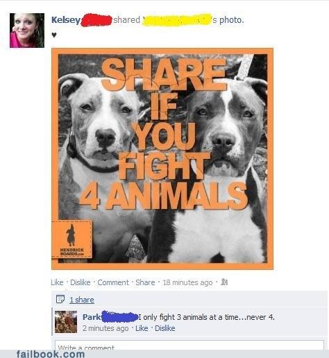 animal rights animals fight fighting - 6376434176