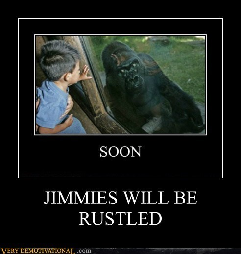 ape gorilla hilarious kid rustled jimmies zoo - 6376945920