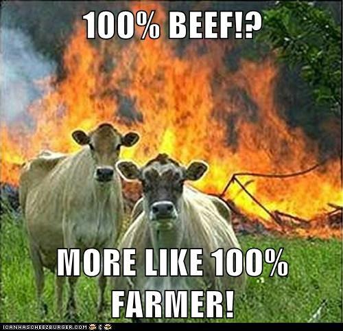100 Beef More Like 100 Farmer Cheezburger Funny