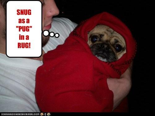 "SNUG as a ""PUG"" in a RUG!"