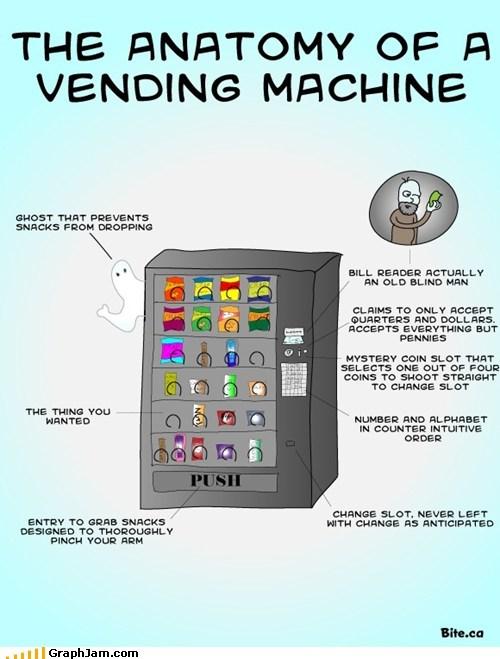anatomy money snacks vending machine - 6378227456