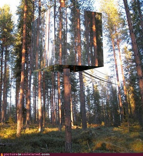 camouflage,treehouse,trees,wtf