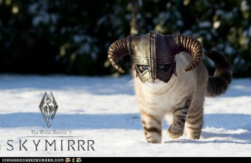 Cats fus roh da Skyrim video games - 6379311360