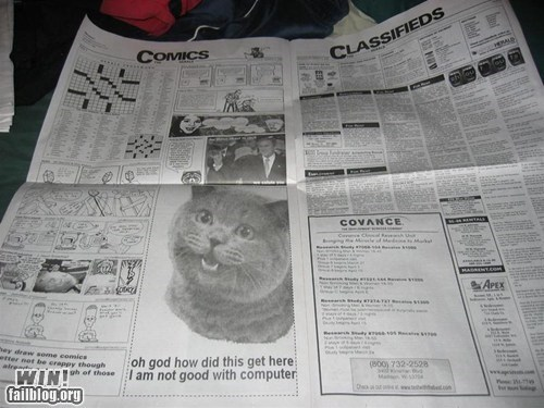 advertisement cat computer error happycat newspaper whoops