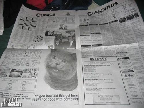advertisement,cat,computer,error,happycat,newspaper,whoops