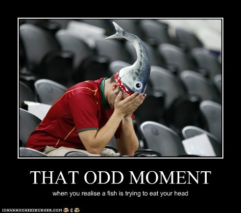 THAT ODD MOMENT when you realise a fish is trying to eat your head