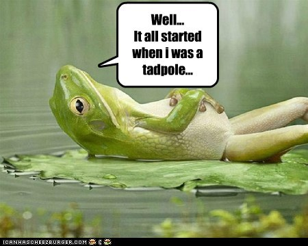 Uh-huh.... uh-huh.... Tell me more.... Well... It all started when i was a tadpole...