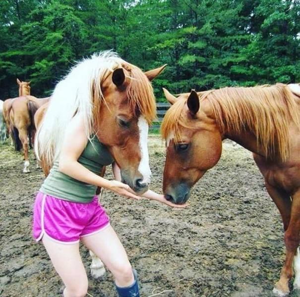 crazy funny weird animals weird animals - 6380805