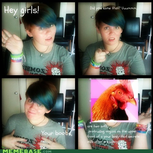 anti joke chicken bewbees did you know girls weird kid - 6381639936