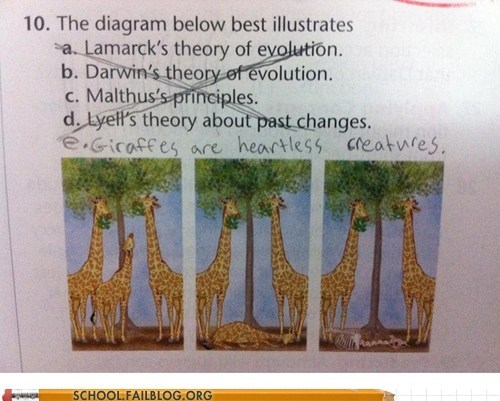 diagram giraffes heartless creatures test humor - 6381764096