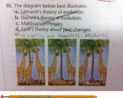 diagram giraffes heartless creatures test humor - 6381764096