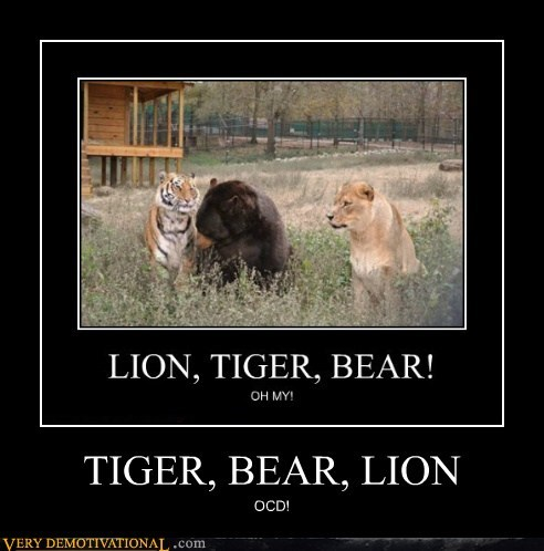 bear,hilarious,lion,ocd,proper order,tiger