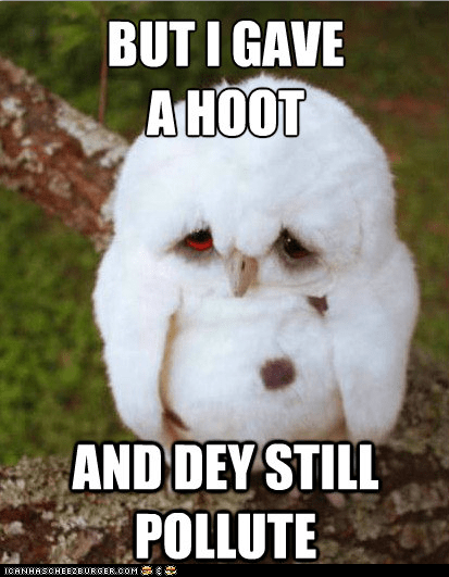 captions,depressed,depressed baby owl,hoot,is it a meme,owls,pollute,pollution,Sad