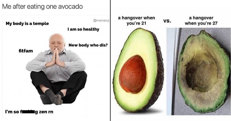 funny avocado memes