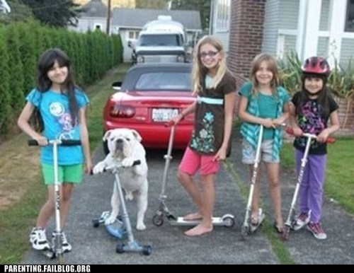 dogs,girls,Photo,scooters
