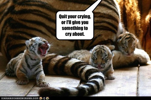 angry,crying,mom,parenting,threat,tiger cubs,tigers,tired