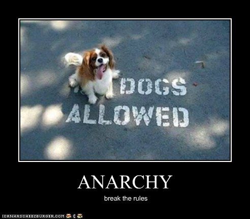 anarchy,captions,cocker spaniel,demotivational poster,dogs,no dogs allowed,tongue